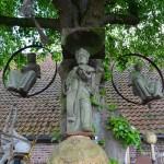 Erasmusboom (Noord-Brabant, Heukelom) [Foto: Hetty Wilming]
