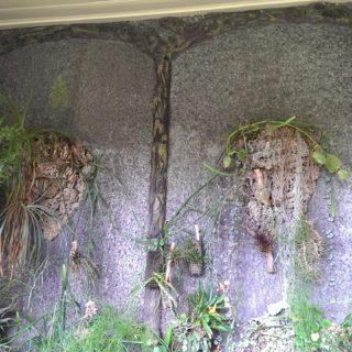 Cementrustieke serrewand