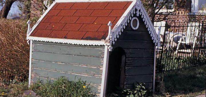 Hondenhok Hoeve Ackerdijk (Zuid-Holland, Schipluiden)