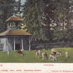Hertenhuis, hertenkamp (Utrecht, Driebergen-Rijsenburg) [Coll. Anton Nuijten]